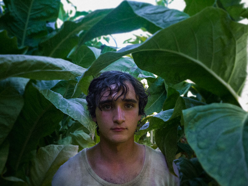 Happy As Lazzaro thumbnail